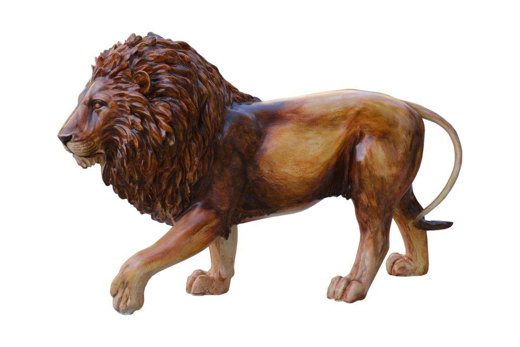 Tusk Lion Trail 2021 - Adrian Wiszniewski - Generously sponsored by Richard Carter