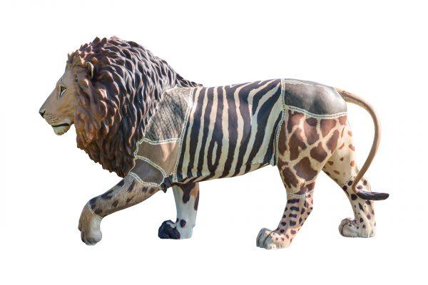 Tusk Lion Trail 2021 - John Banovich - Generously sponsored by Rhonda Vetere