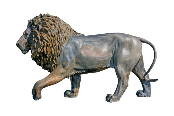 Tusk Lion Trail 2021 - Paton Miller - Generously sponsored by Emso Asset Management