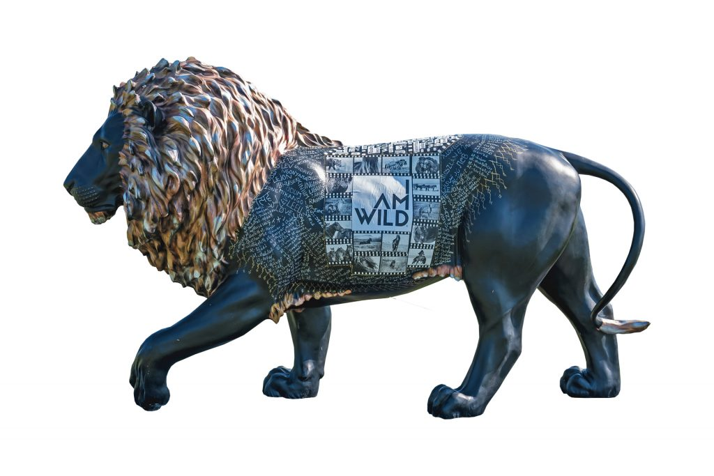 Tusk Lion Trail 2021 - Robert Dutesco - Generously sponsored by Ninety One